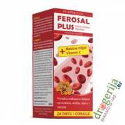 Ferosal Plus